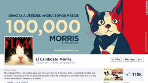 130613225131-mexico-cat-mayor-facebook-story-top